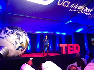 Ted 5